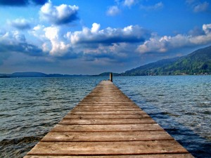 Tiny-Ducks-Fall-Asleep-On-A-Dock