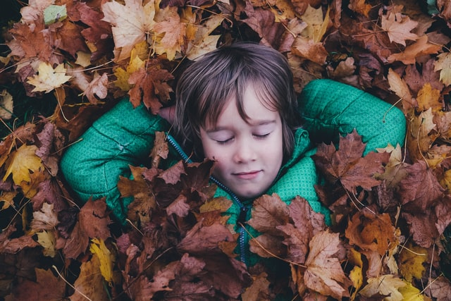 Kids and Catnapping– What you need to know
